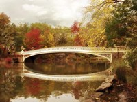Bow Bridge Reflected Fine-Art Print