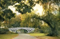 Gothic Bridge Fine-Art Print