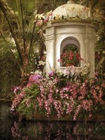 The Orchid Show Fine-Art Print