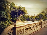 Bow Bridge View Fine-Art Print