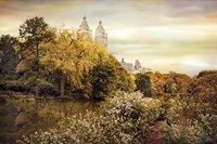 Central Park Autumn Fine-Art Print