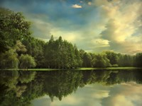Summer Reflections Fine-Art Print