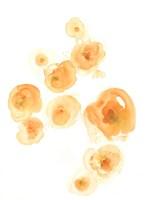 Falling Blossoms II Fine-Art Print