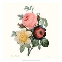 Blushing Bouquet II Fine-Art Print