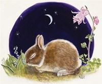 Sleeping Bunny Fine-Art Print
