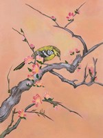 Asian Bird 1 Fine-Art Print