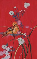 Bird On Red Fine-Art Print