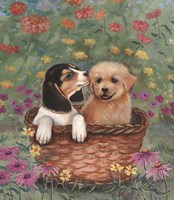 Beagle And Golden Retriever Fine-Art Print