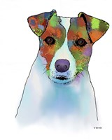 Jack Russell Terrier 1 Fine-Art Print