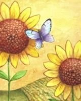 Sunflower and Butterfly Fine-Art Print