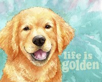 Life Is Golden Retriever Fine-Art Print