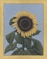 Apple Sunflower Fine-Art Print