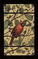 Apple Cardinal Fine-Art Print