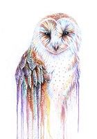 Barred Rainbow Owl Fine-Art Print