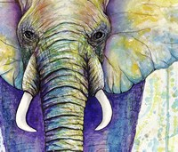Elephant Face Fine-Art Print