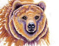 Grizzly Bear Fine-Art Print