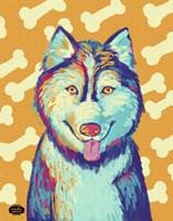 Husky Pop Fine-Art Print