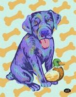 Labrador Pop Framed Print