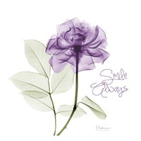Smile Always Purple Fine-Art Print
