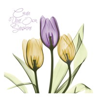 Purple Sunshine Tulips Fine-Art Print