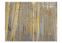 Aspen Forest in Gold Fine-Art Print