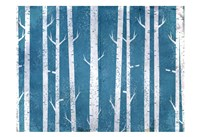 Blue In the Birches Fine-Art Print