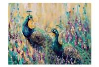 Peacocks In The Field 1 Fine-Art Print