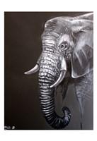 Elephant Grounds 1 Fine-Art Print