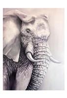 Elephant Trail 1 Fine-Art Print