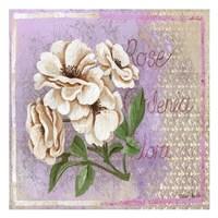 Gardenia Fine-Art Print