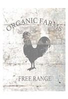 Organic Farm Fine-Art Print