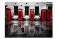 London Phone Booths Bird Fine-Art Print
