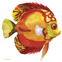 Fish 3 Red-Yellow Fine-Art Print