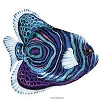 New Fish 3 Fine-Art Print