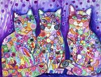 Candy Cats Fine-Art Print