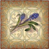 Purple Hyacinth Fine-Art Print
