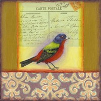 Carte Postale Bird 1 Fine-Art Print