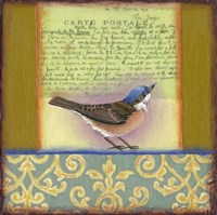 Carte Postale Bird 3 Fine-Art Print