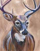 Deer Fine-Art Print