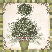 Topiary I Framed Print