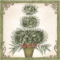 Topiary III Framed Print