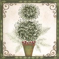 Topiary IV Framed Print