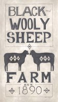 Black Wooly Sheep Fine-Art Print