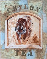 Ceylon Tea Fine-Art Print