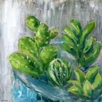 Southwestern Garden III Fine-Art Print