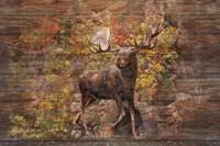Moose Meadow Fine-Art Print