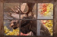 There's a Moose at the Window Fine-Art Print