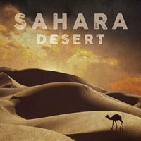Vintage Sahara Desert with Sand Dunes and Camel, Africa Fine-Art Print