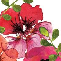 Vibrant Floral III Fine-Art Print