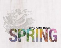 Why Hello There Spring Fine-Art Print